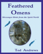 Feathered Omens (Kit) - Ted Andrews